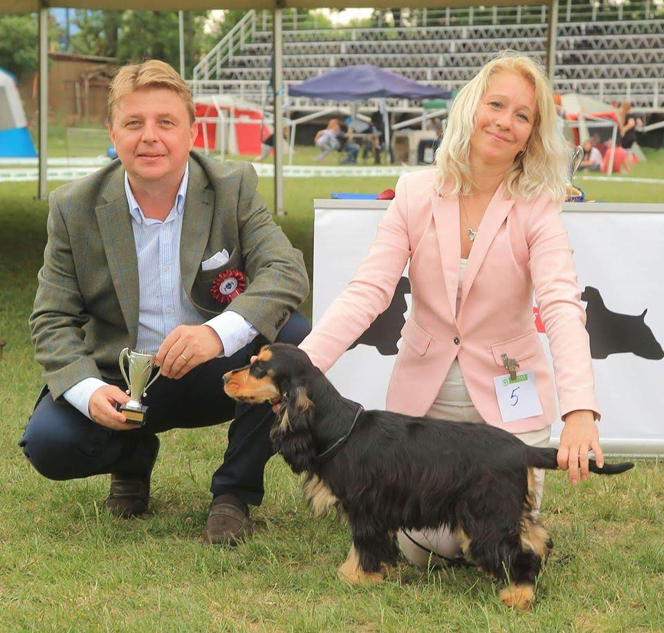 Best puppy in show: Roxicocker Galway Girl